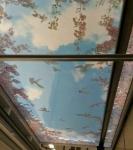 3D натяжные потолки _1