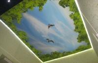 3D натяжные потолки _4